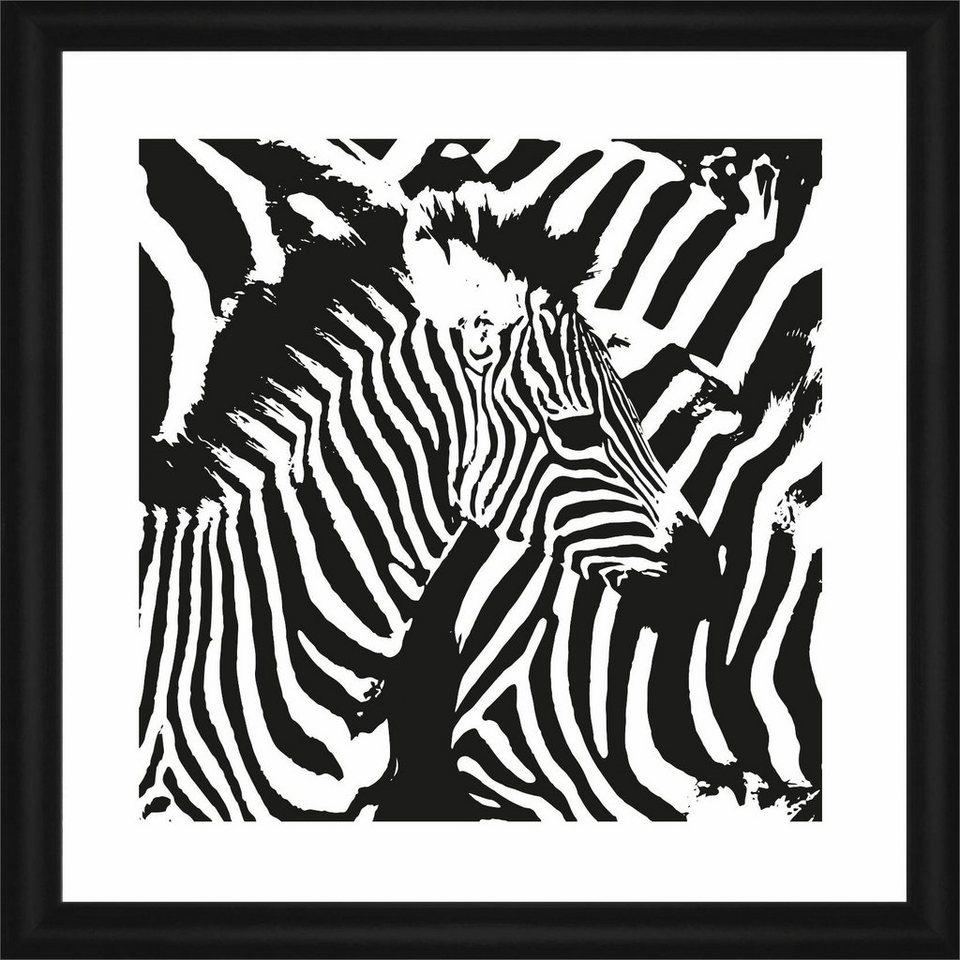 Home affaire Rahmenbild »Zebra-Streifen«, 50/50 cm in weiß/schwarz
