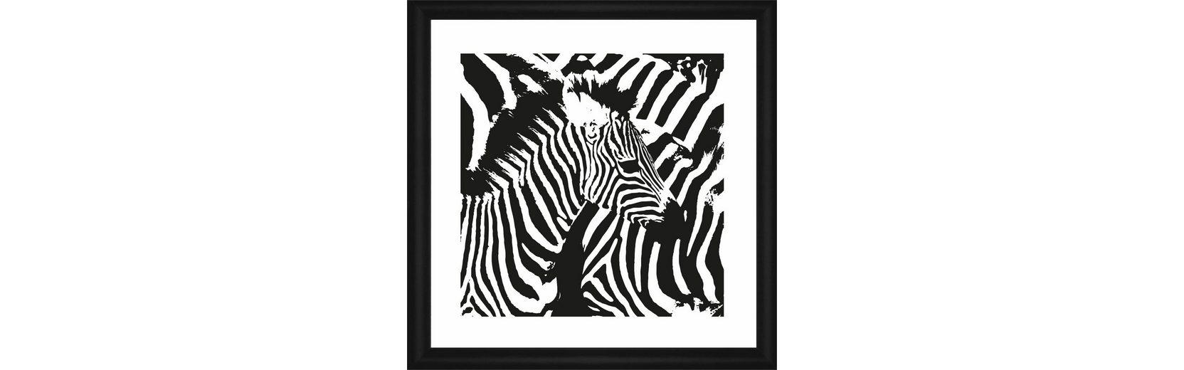 Home affaire Rahmenbild »Zebra-Streifen«, 50/50 cm