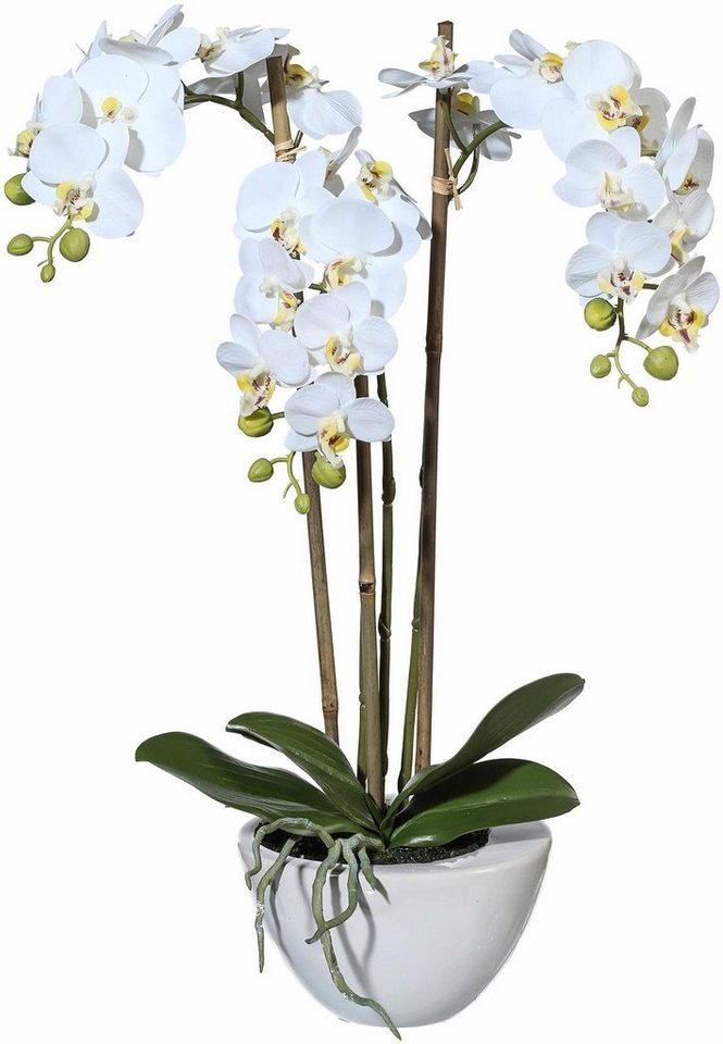Home affaire Kunstblume »Mini Orchidee« in Weiß