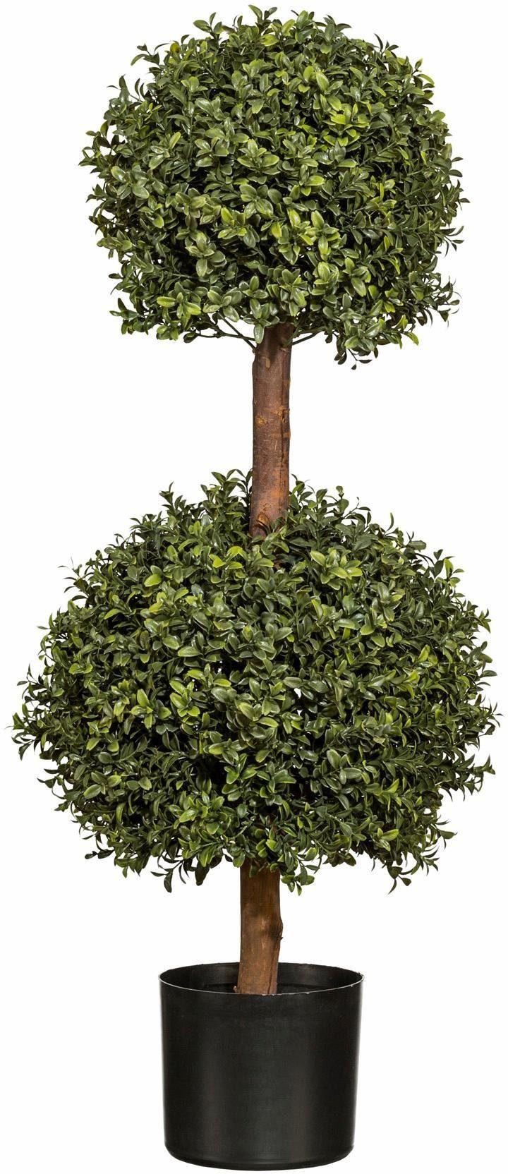 Home affaire Kunstpflanze »Buchskugelbaum«