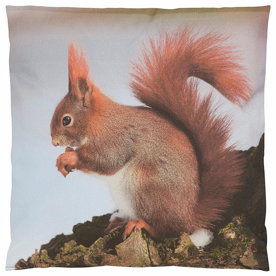 Kissenbezug, Casatex, »Eichhörnchen«, mit Tiermotiv in silber-braun