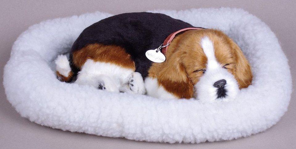 Plüschtier mit Funktion, Hund, »Perfect Petzzz® Beagle«
