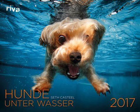 Kalender »Hunde unter Wasser 2017«