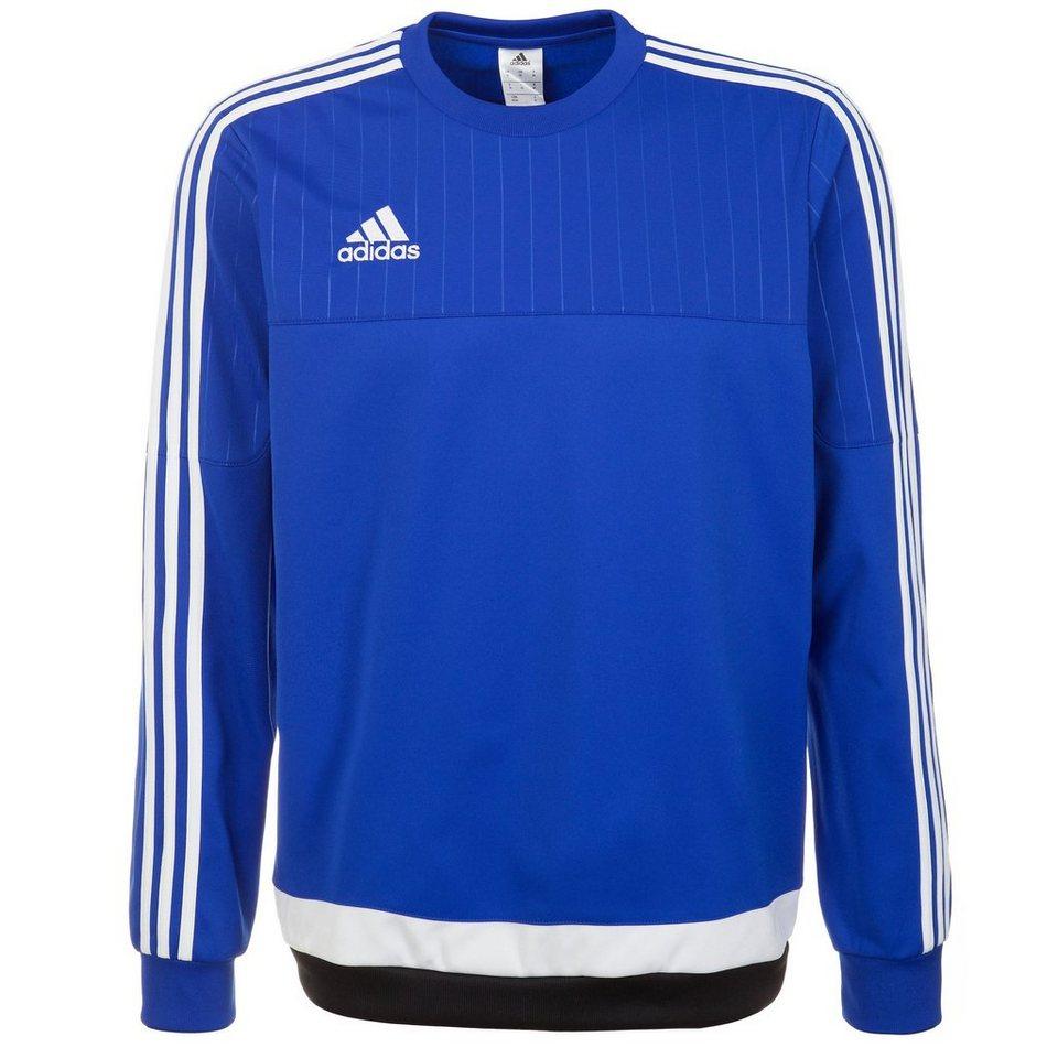 adidas Performance Tiro 15 Trainingssweat Herren in blau / weiß