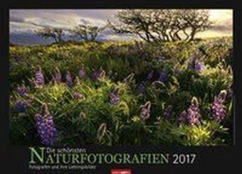 Kalender »Die schönsten Naturfotografien 2017 - Kalender...«