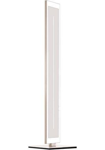 EVOTEC LED Stehlampe»ZEN«