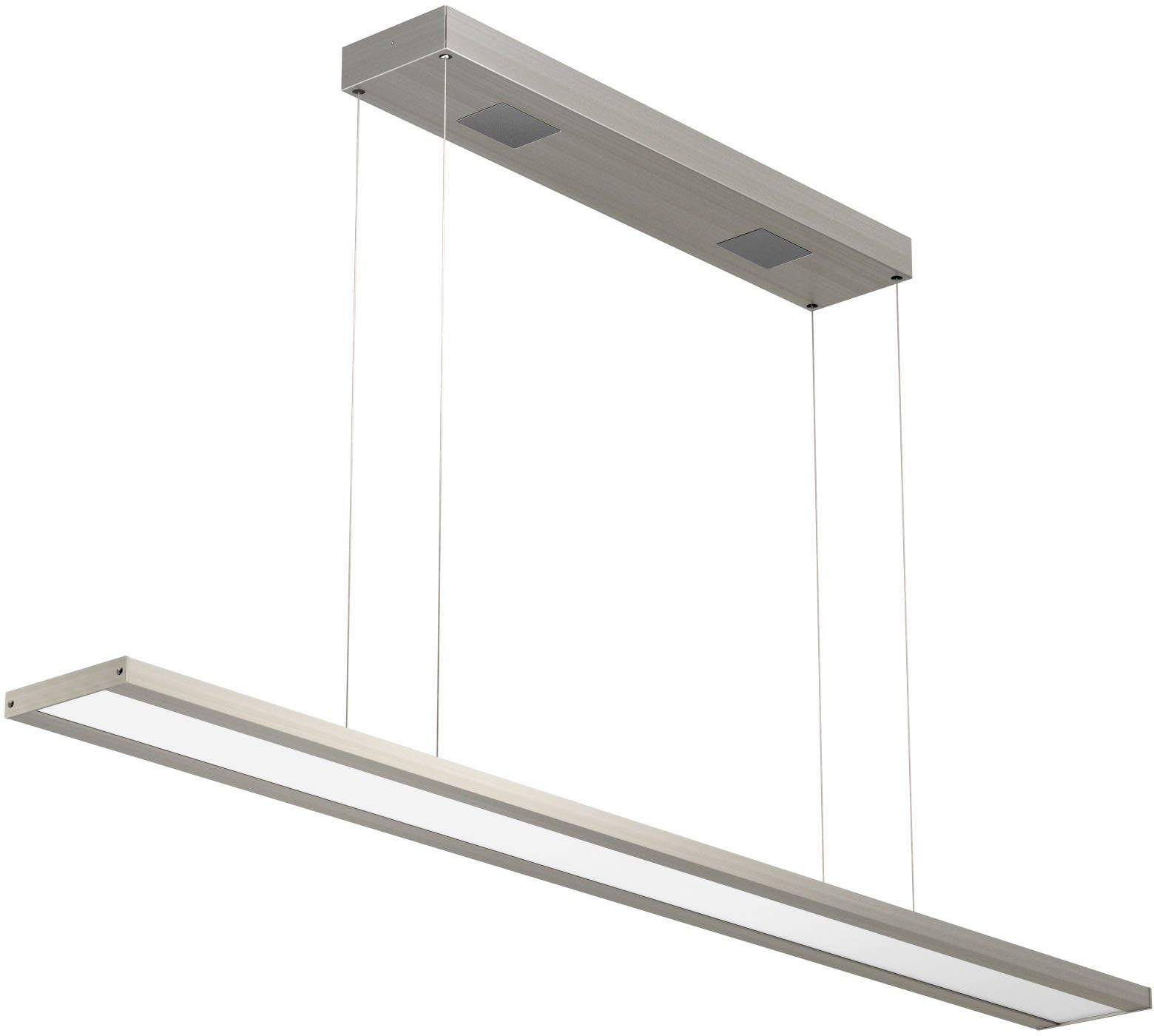 EVOTEC LED-Pendelleuchte, 1flg., »CLASSIC TEC BASIC«