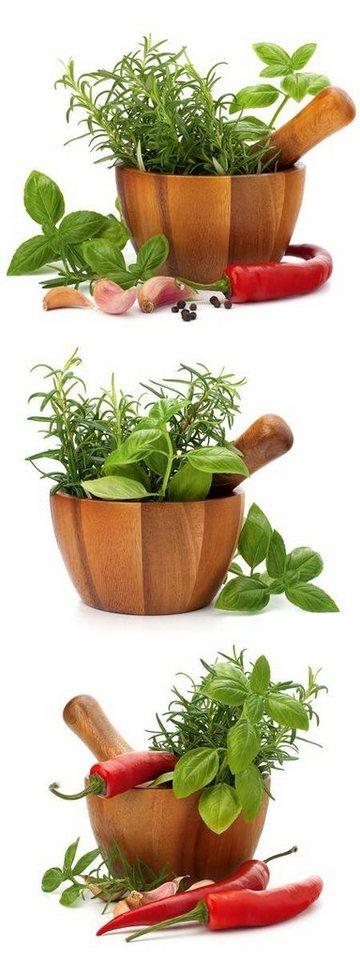 Eurographics Glasbild »Fresh Flavoring Spices & Herbs«, 30/80cm in grün/braun