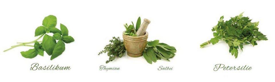 Eurographics Wandtattoos »Different Herbs«, 3x 30/30cm in weiß/grün