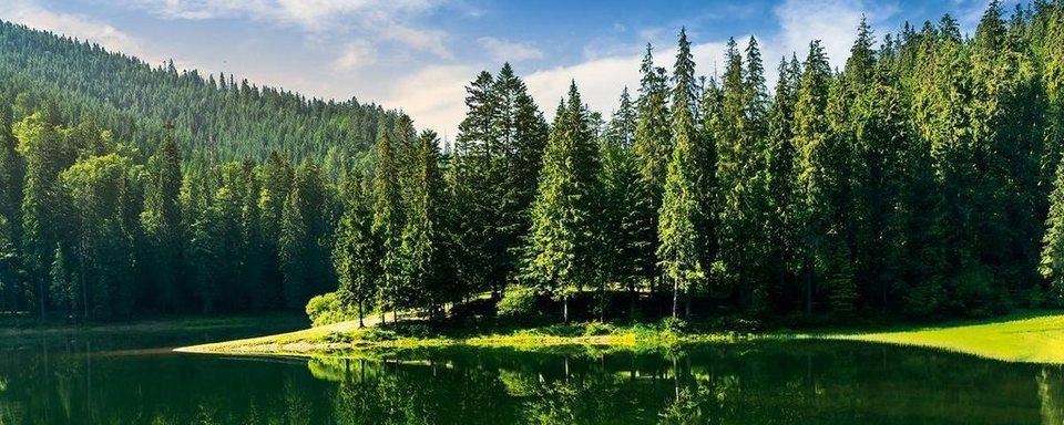 Eurographics Glasbild »Idyllic Green Lake View«, 125/50cm in grün