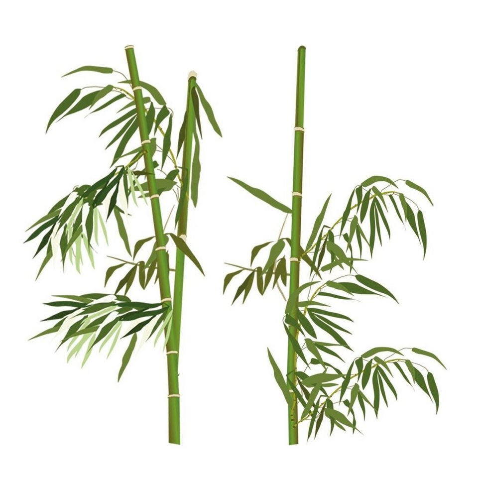 Eurographics Wandtattoos »Bamboo Everywhere«, 30/140cm in grün/weiß