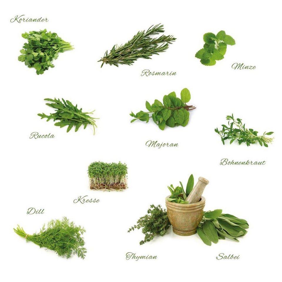 Eurographics Wandtattoos »Different Herbs«, 110/100cm in grün/weiß