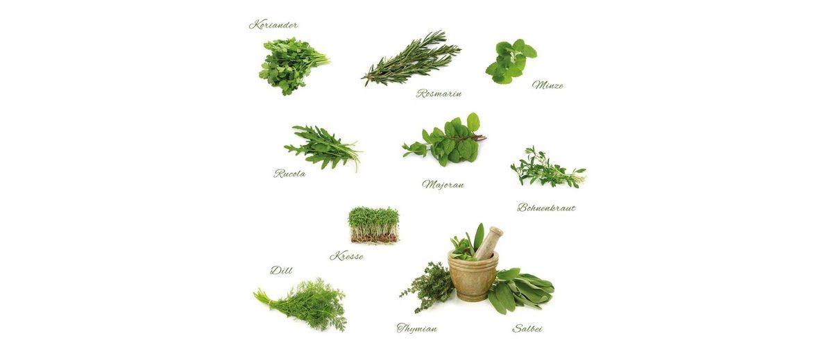 Eurographics Wandtattoos »Different Herbs«, 110/100cm