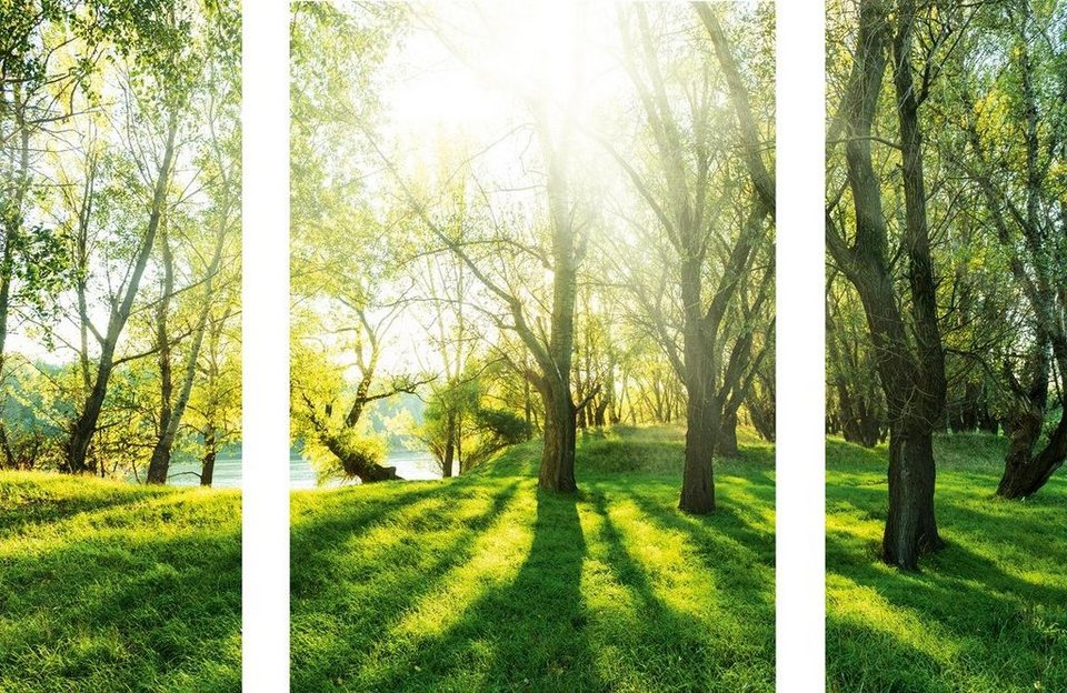 Eurographics Wandtattoos »Summer Forrest«, 70/50cm in grün