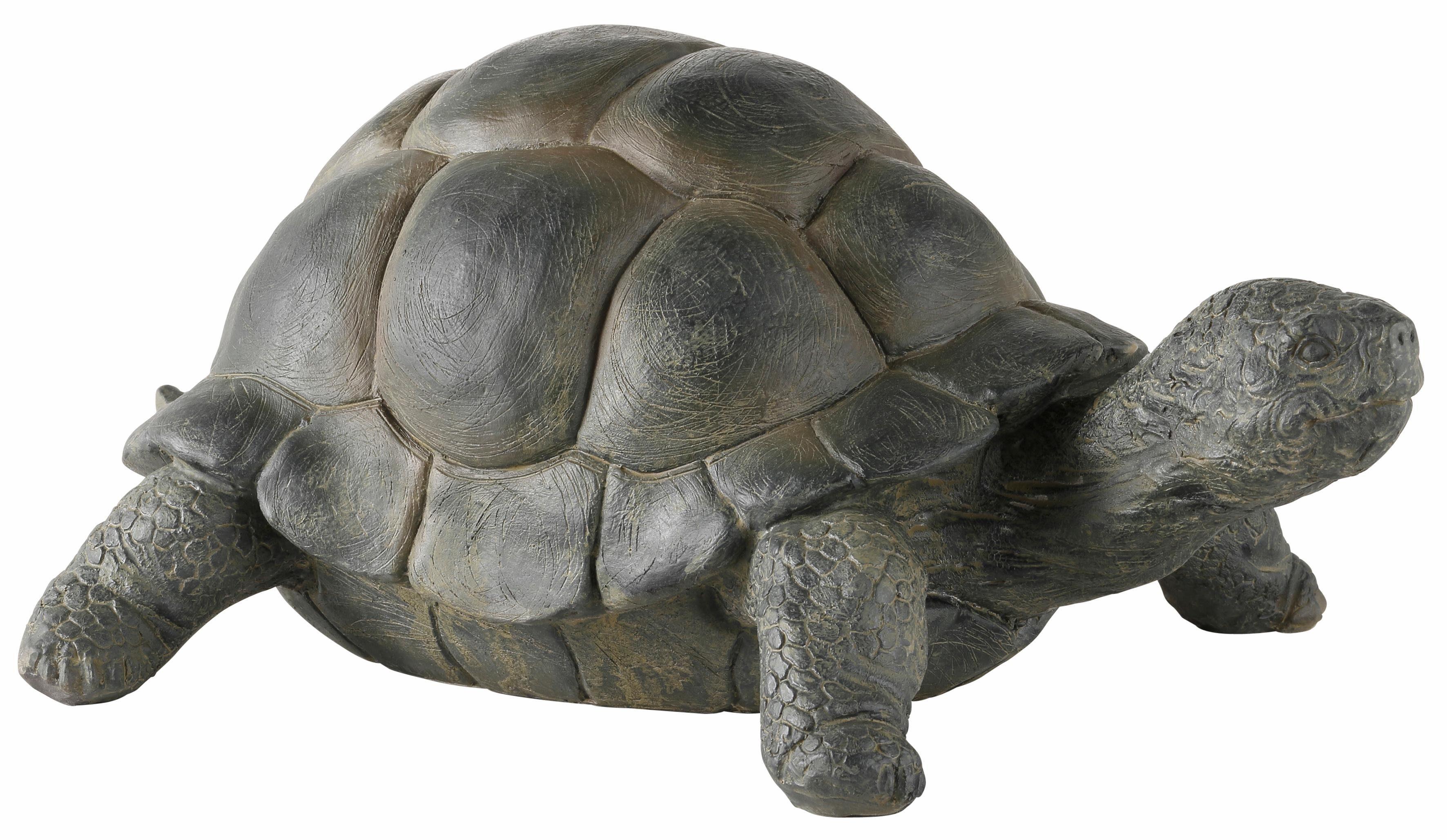Home affaire Dekofigur Schildkröte
