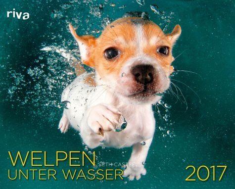 Kalender »Welpen unter Wasser 2017«