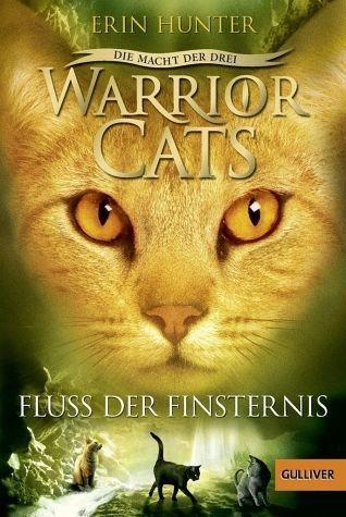 Broschiertes Buch »Fluss der Finsternis / Warrior Cats Staffel 3...«