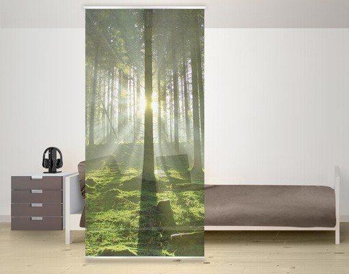 Bilderwelten Raumteiler 250x120cm »Spring Fairytale« in Farbig