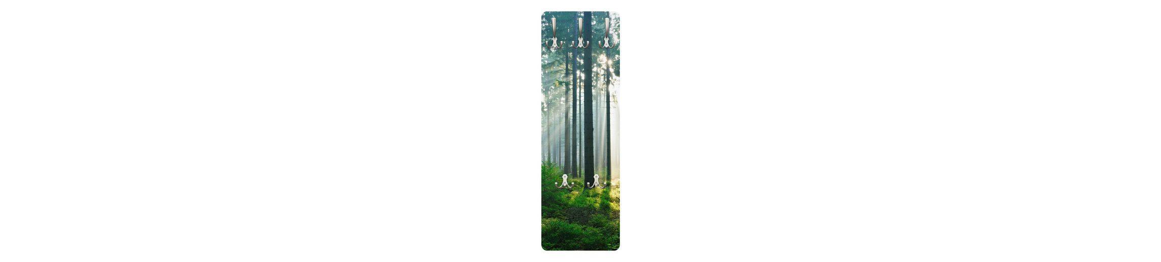 Bilderwelten Wandgarderobe 139x46x2cm »Enlightened Forest«