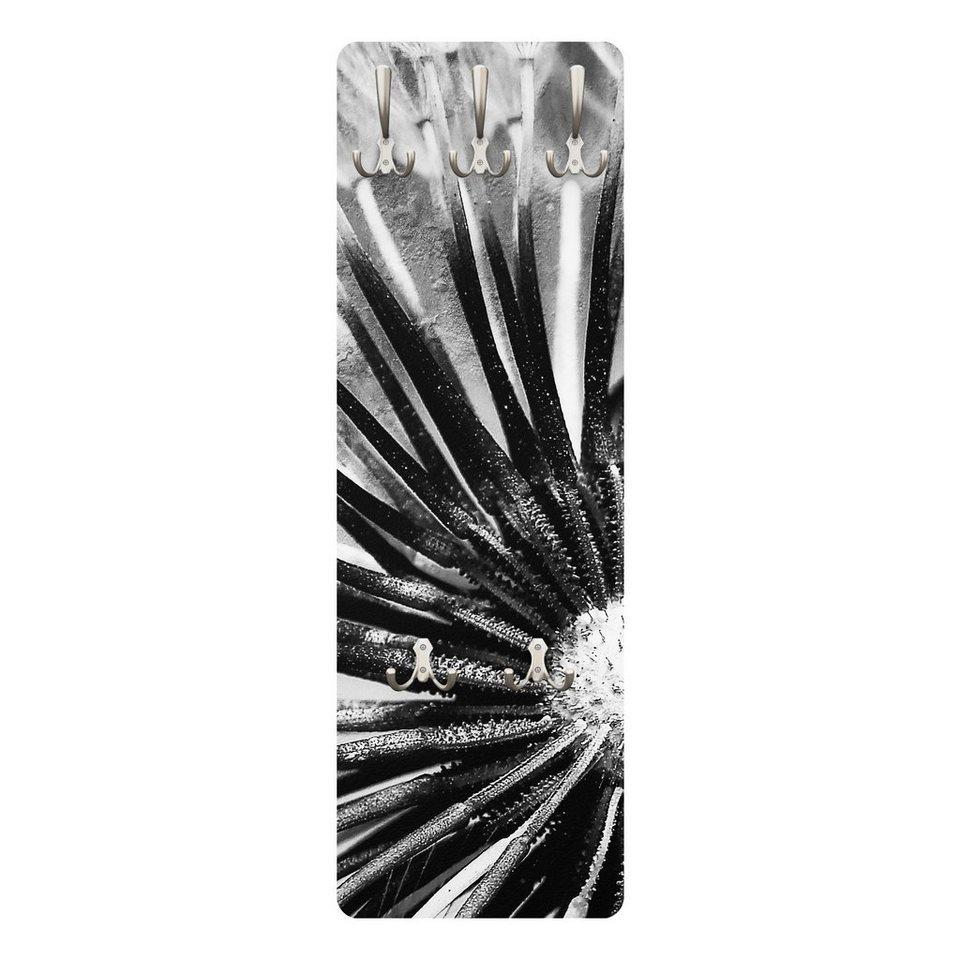 Bilderwelten Wandgarderobe Blumen 139x46x2cm »Pusteblume Schwarz & Weiß« in Grau