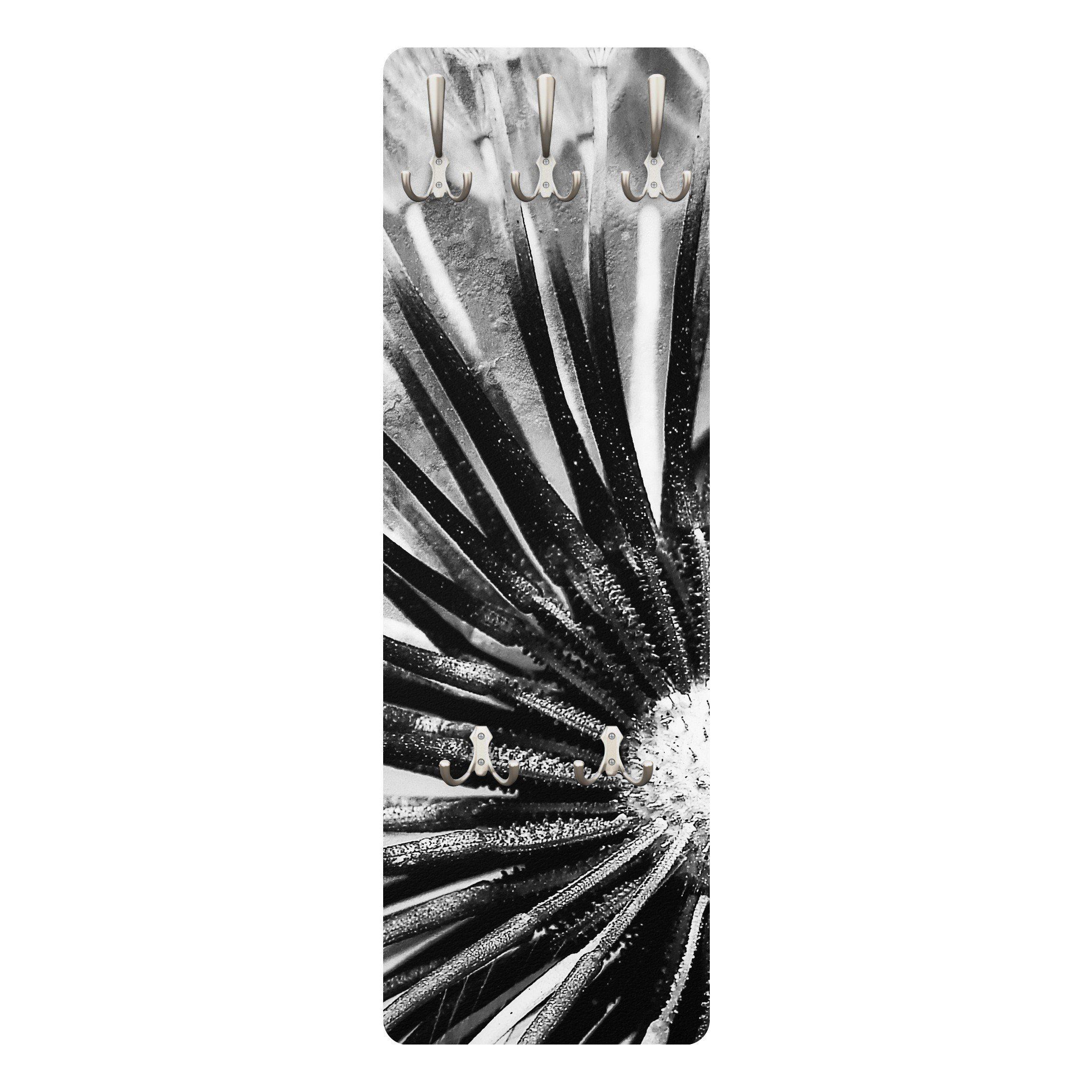 Bilderwelten Wandgarderobe Blumen 139x46x2cm »Pusteblume Schwarz & Weiß«