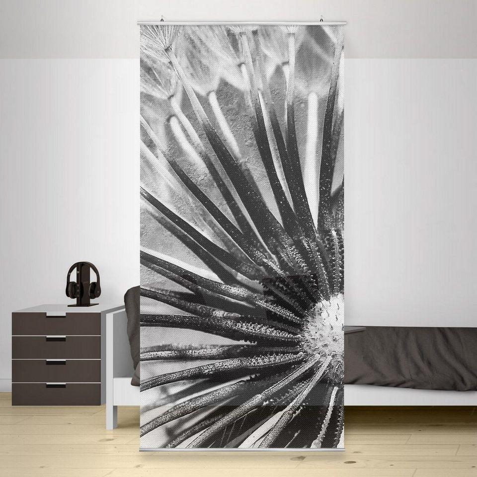 Bilderwelten Raumteiler 250x120cm »Pusteblume Schwarz & Weiß« in Schwarz
