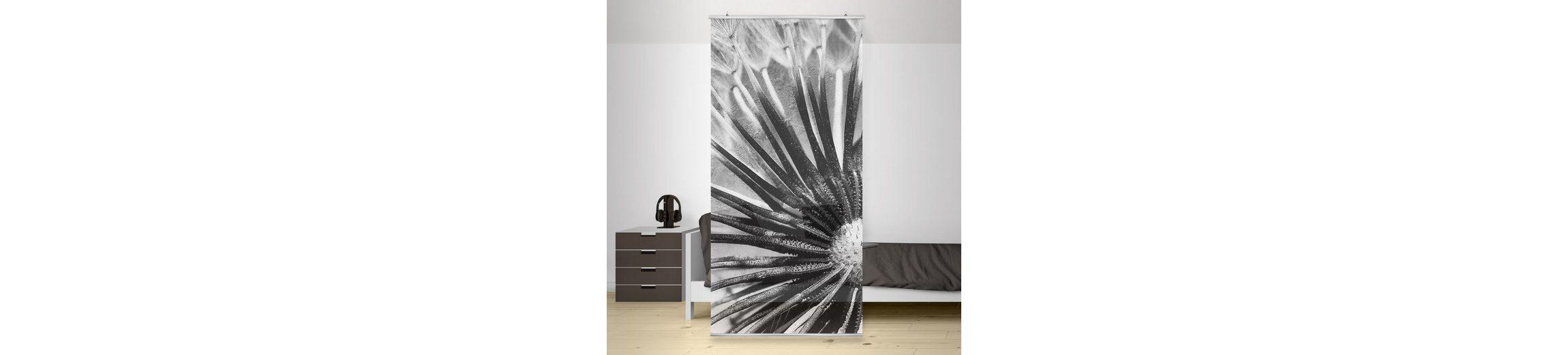 Bilderwelten Raumteiler 250x120cm »Pusteblume Schwarz & Weiß«