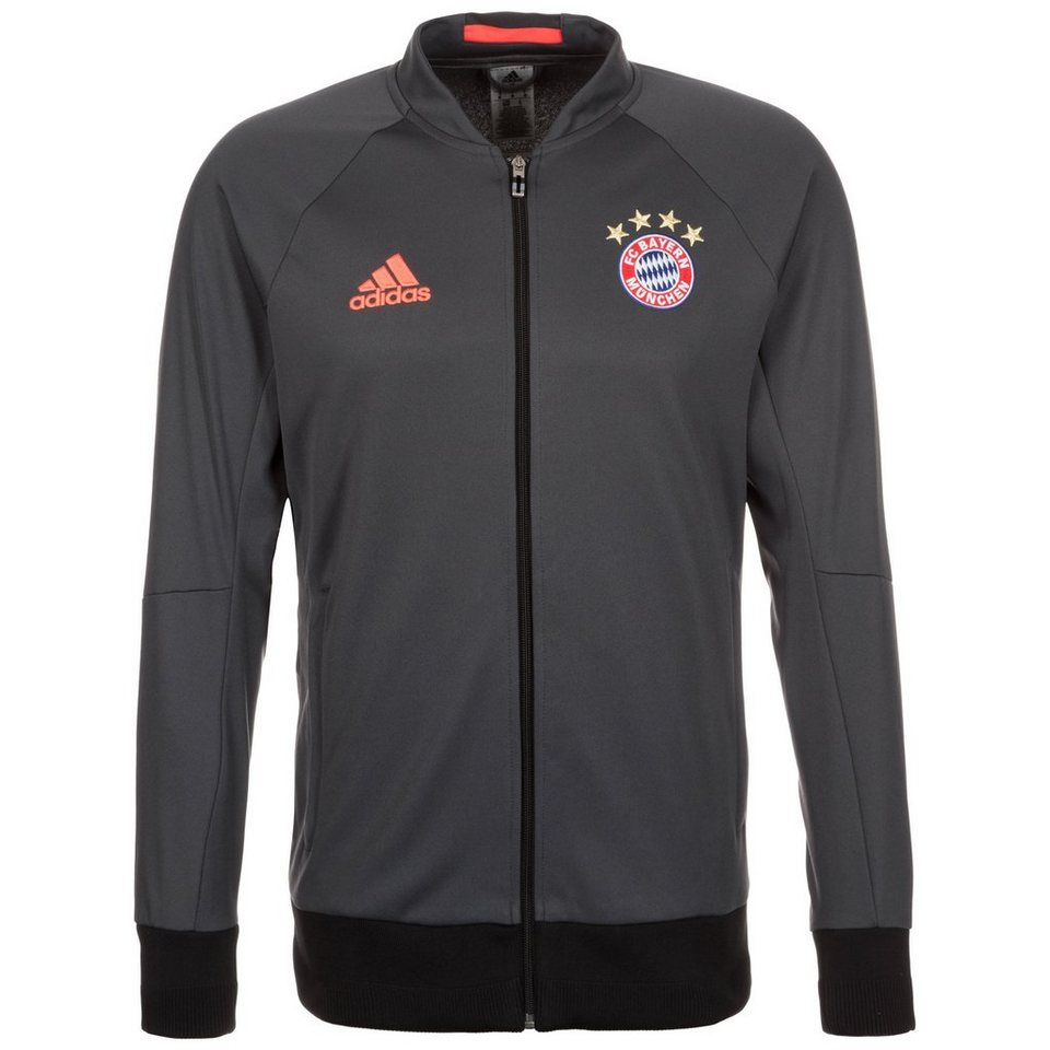 adidas Performance FC Bayern München Anthem Jacke Herren in dunkelgrau / grau