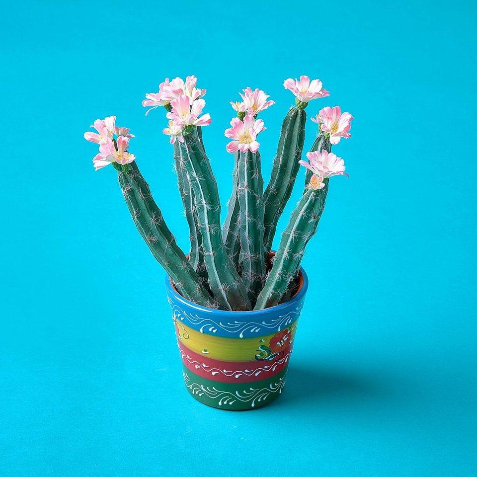 BUTLERS FLOWER FRIEND »Blumentopf« in bunt