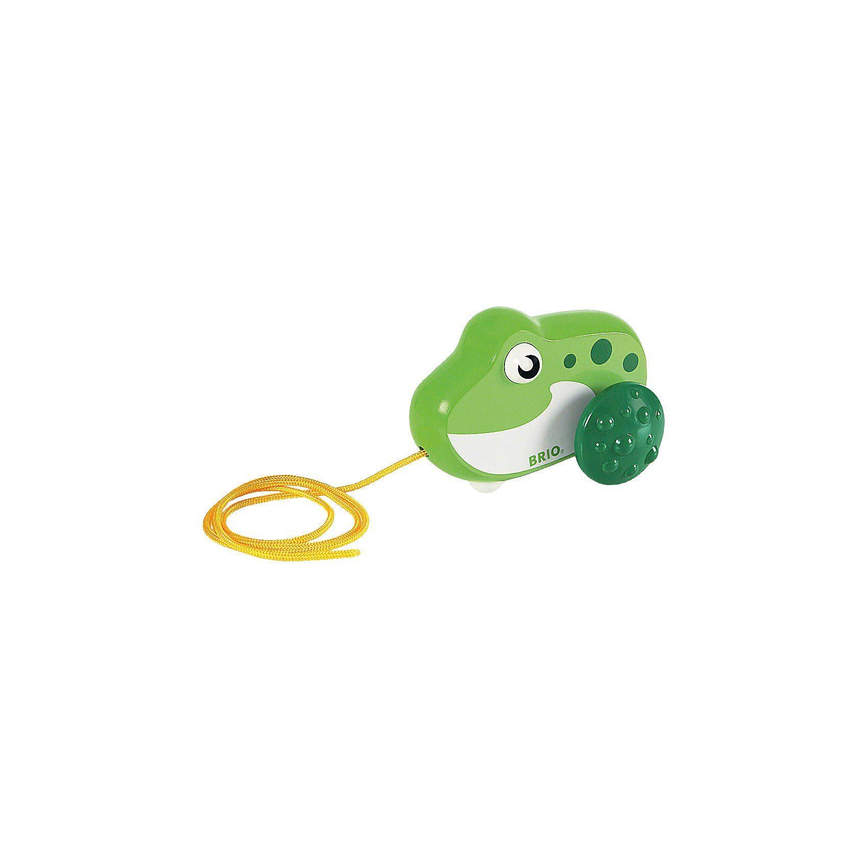 BRIO Nachzieh Frosch