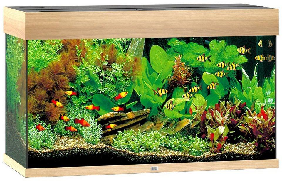 Juwel Aquarien Aquarium »Rio 125«, Maße (B/T/H): 81/36/50 cm in helles Holz