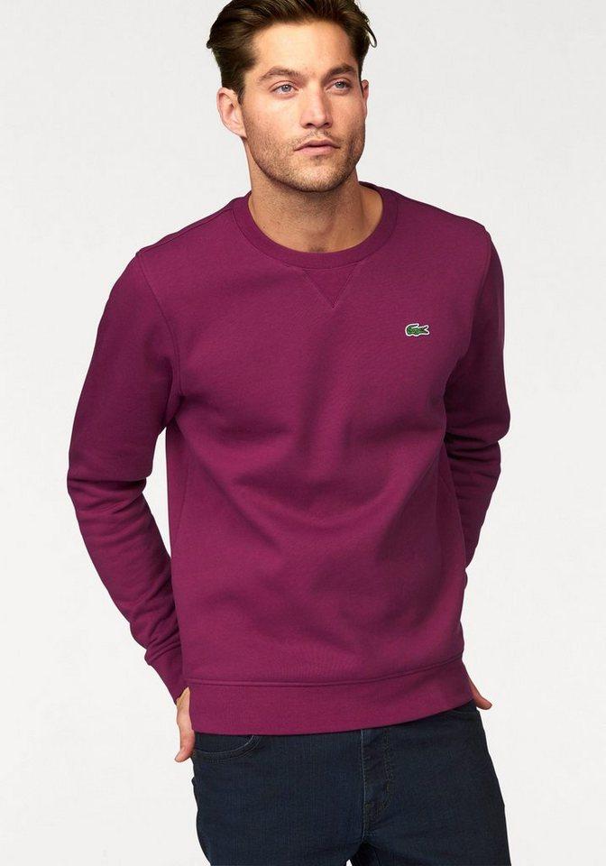Lacoste Sweatshirt in bordeaux