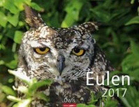 Kalender »Eulen 2017«