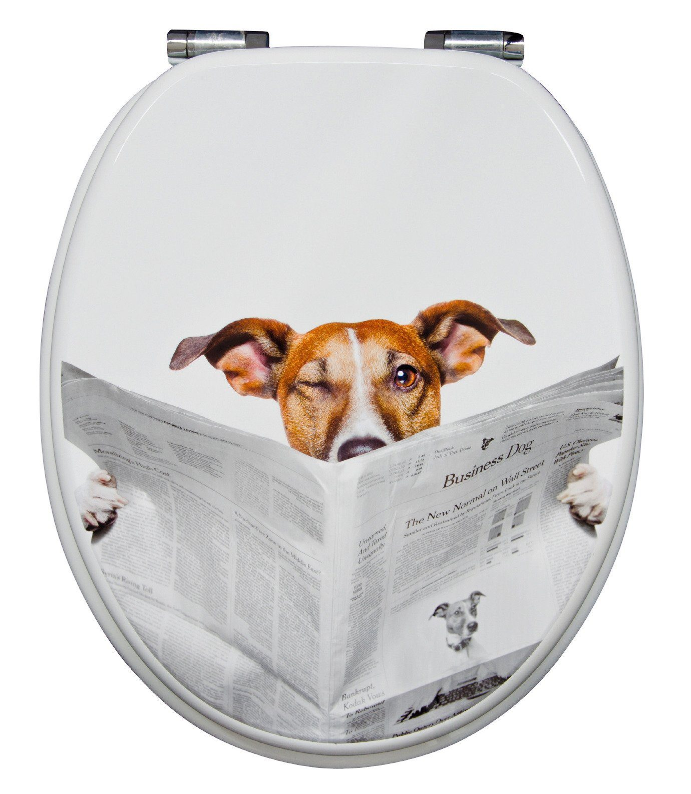 WC-Sitz »Lesestoff«, Mit Absenkautomatik