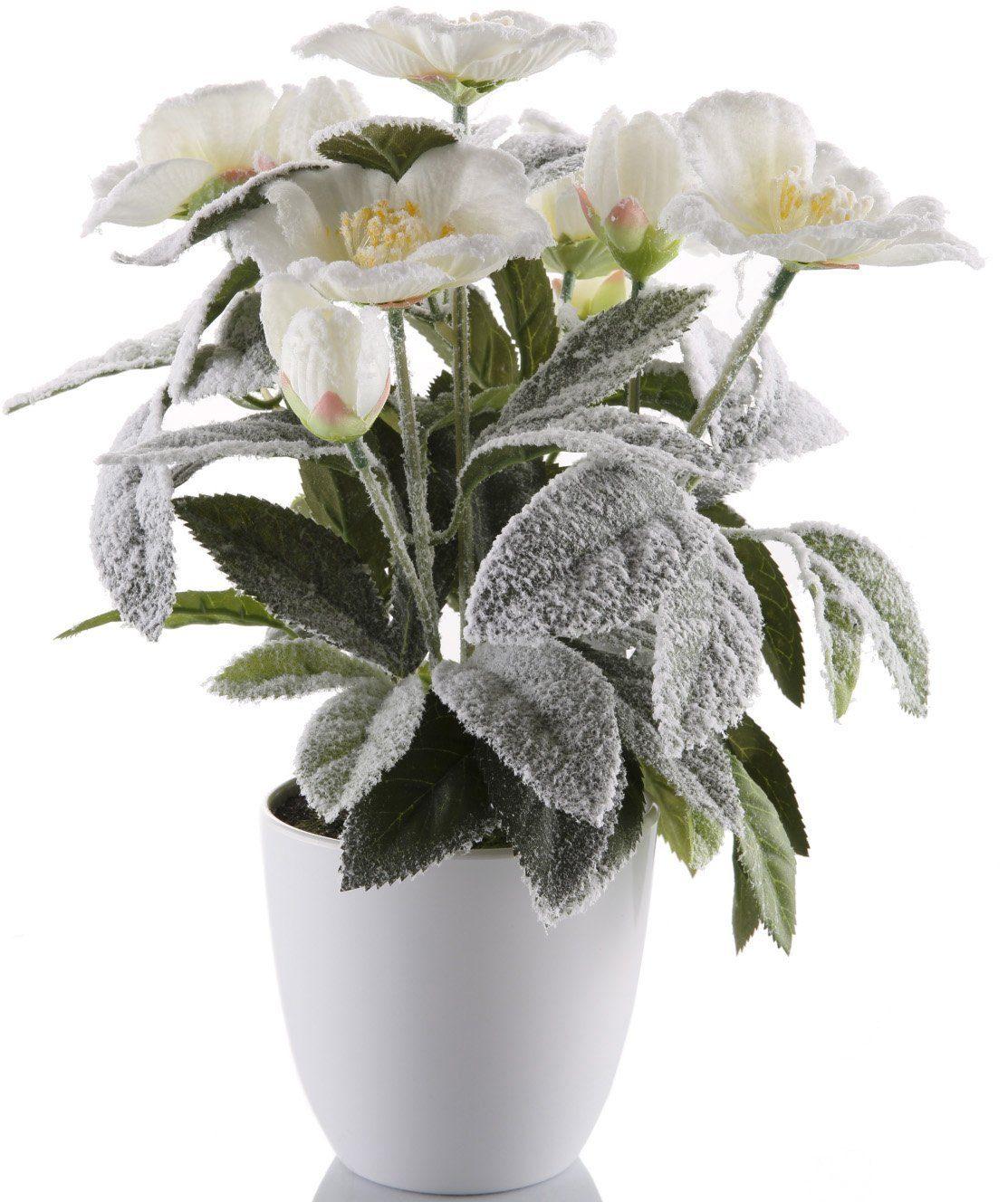 Kunstblume »Christrose«, leicht beschneit