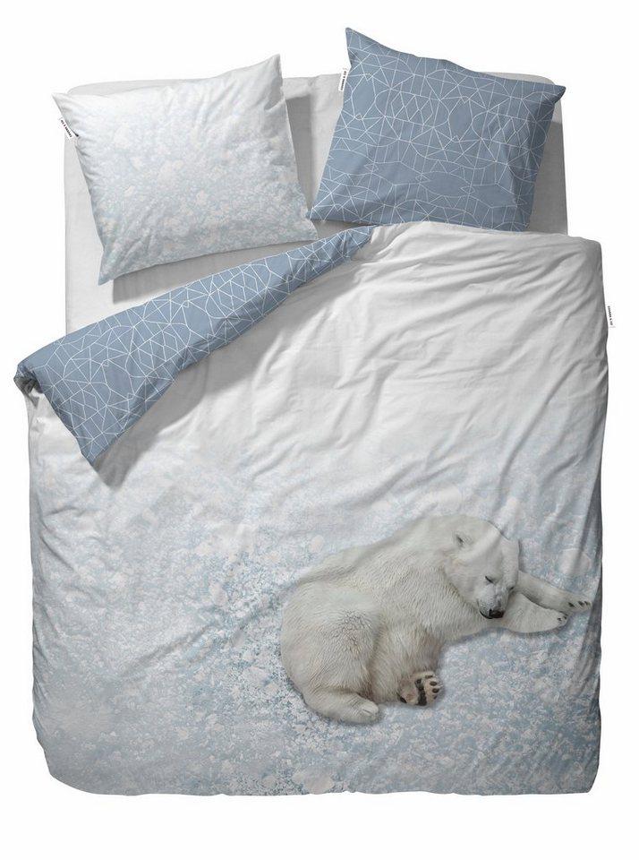 Jugendbettwäsche, Covers & Co, »Polar«, mit Eisbär Motiv in blau