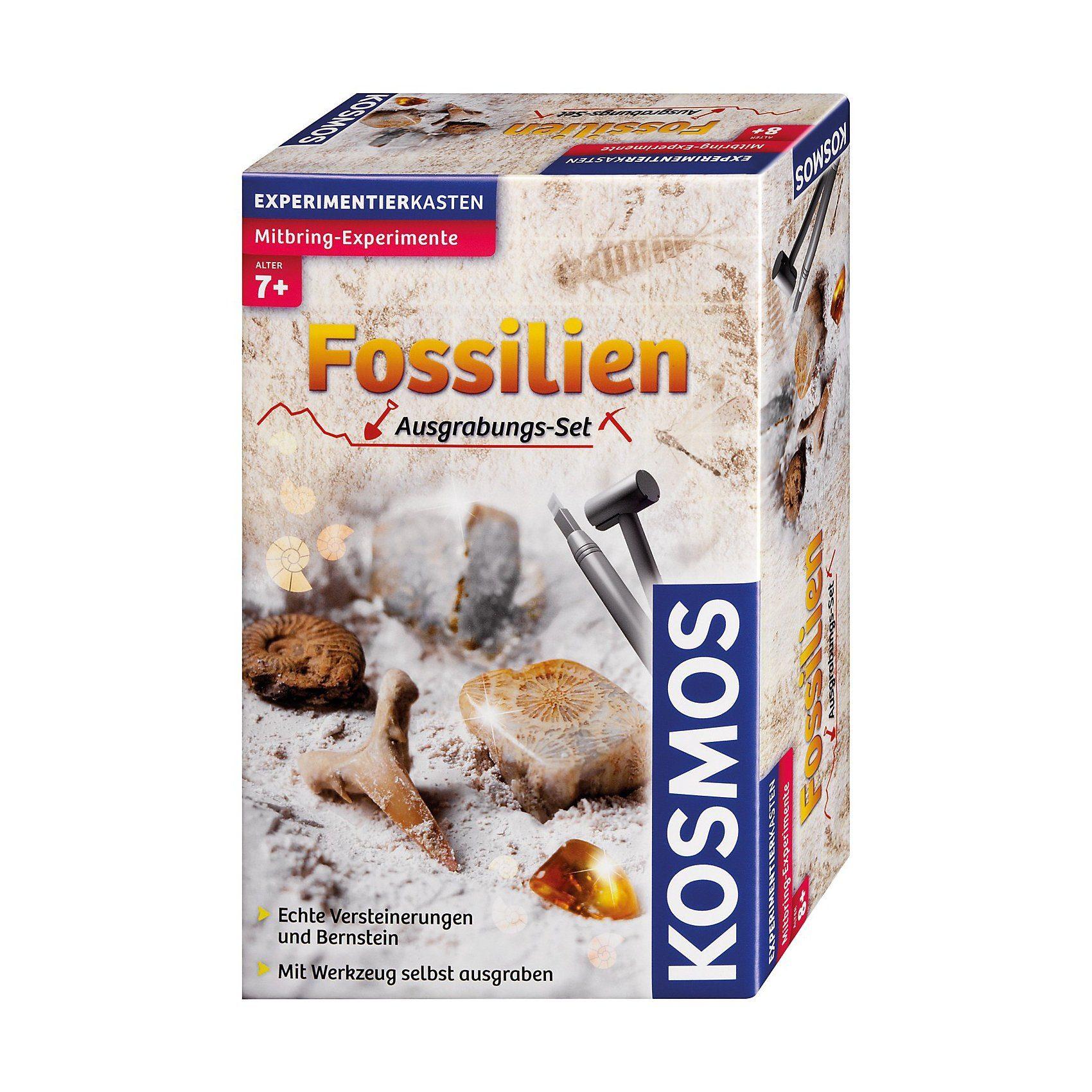 Kosmos Mitbringexperimente Ausgrabungsset Fossilien