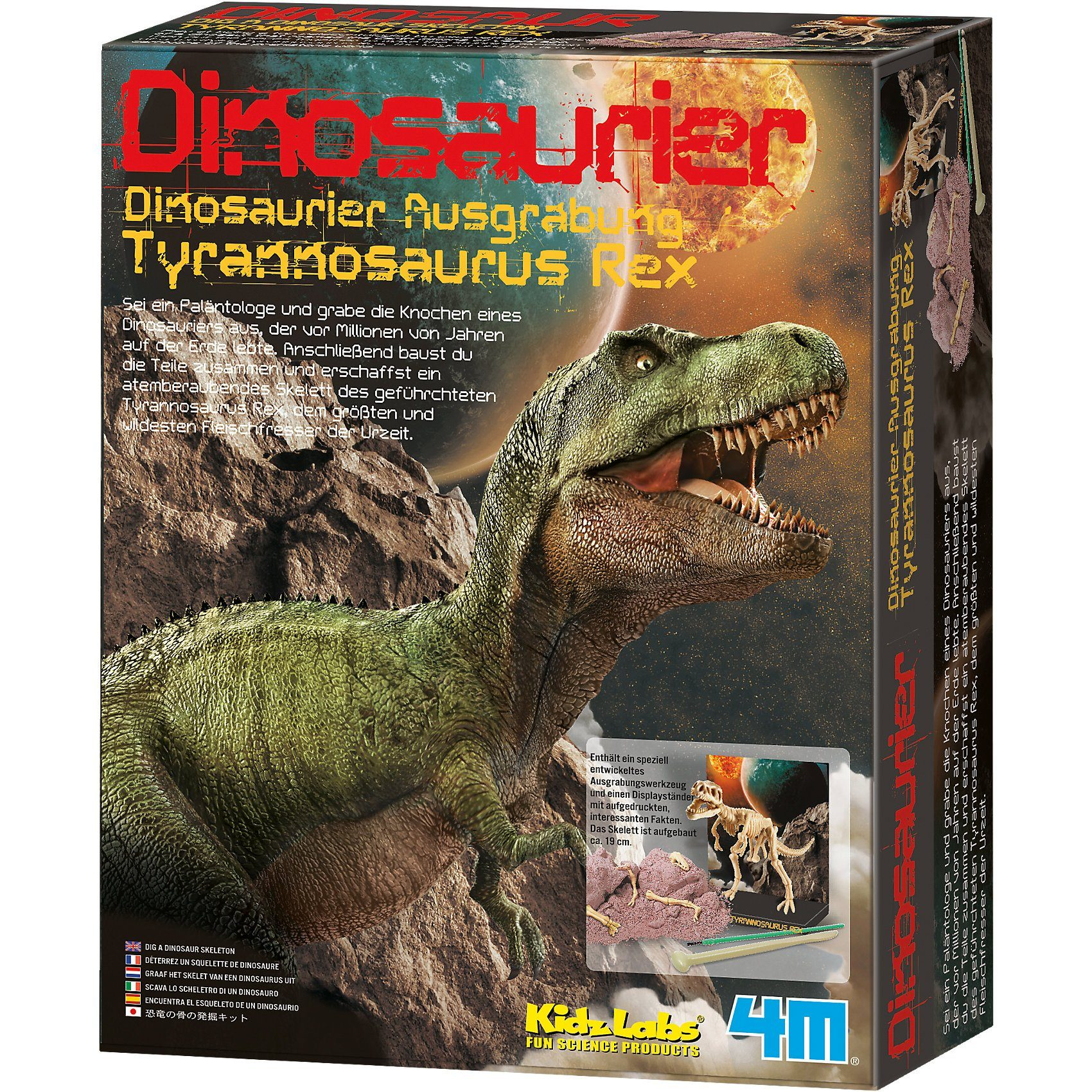 Dinosaurier-Ausgrabungsset T-Rex