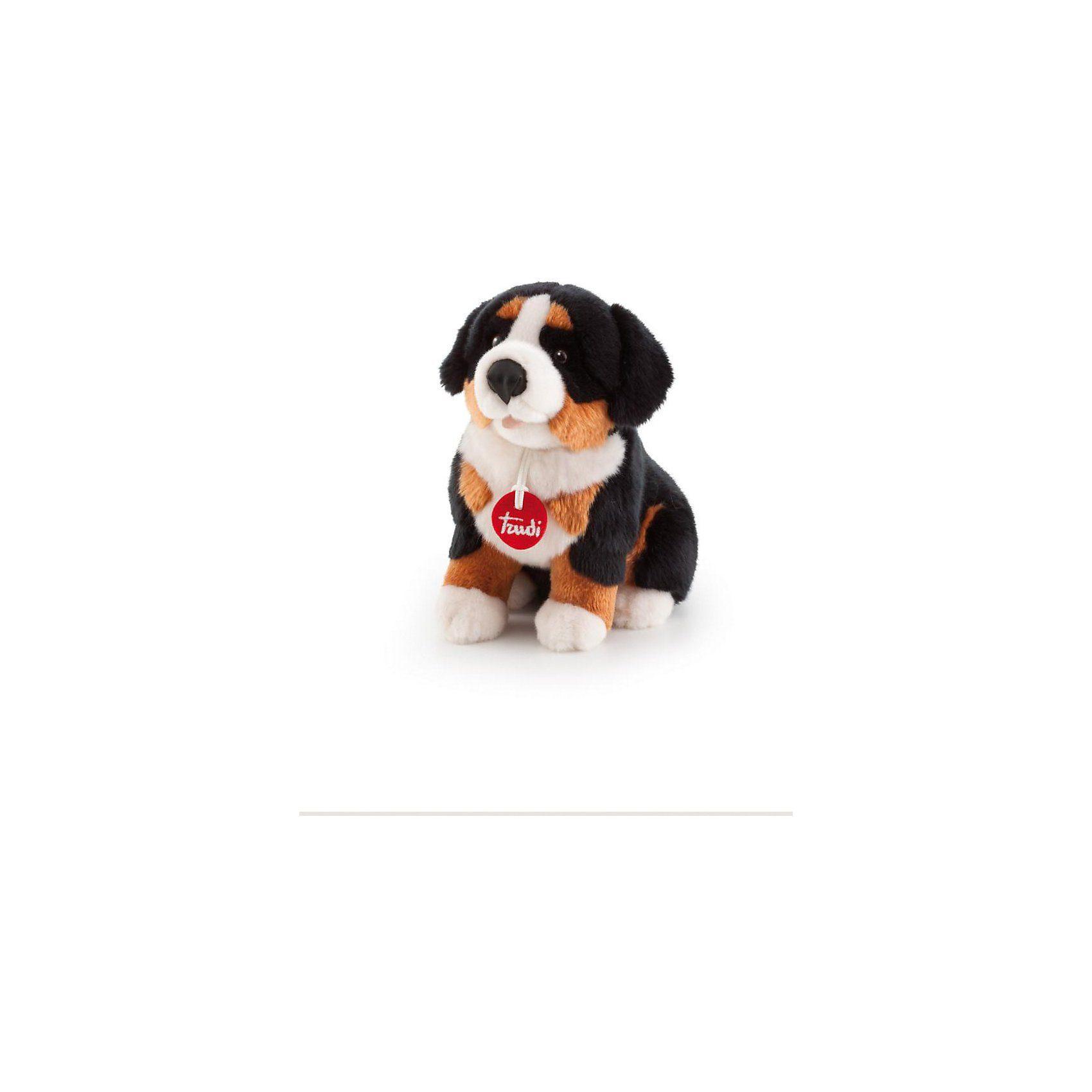 Trudi Berner Sennenhund Bruce, 32cm