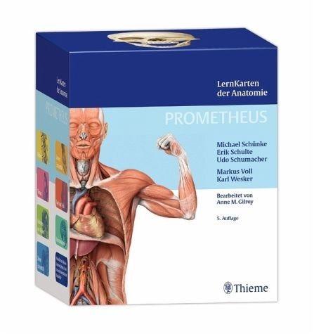 Box »PROMETHEUS LernKarten der Anatomie«