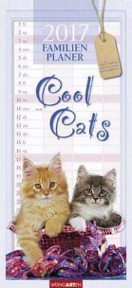 Kalender »Cool Cats Familienplaner 2017«