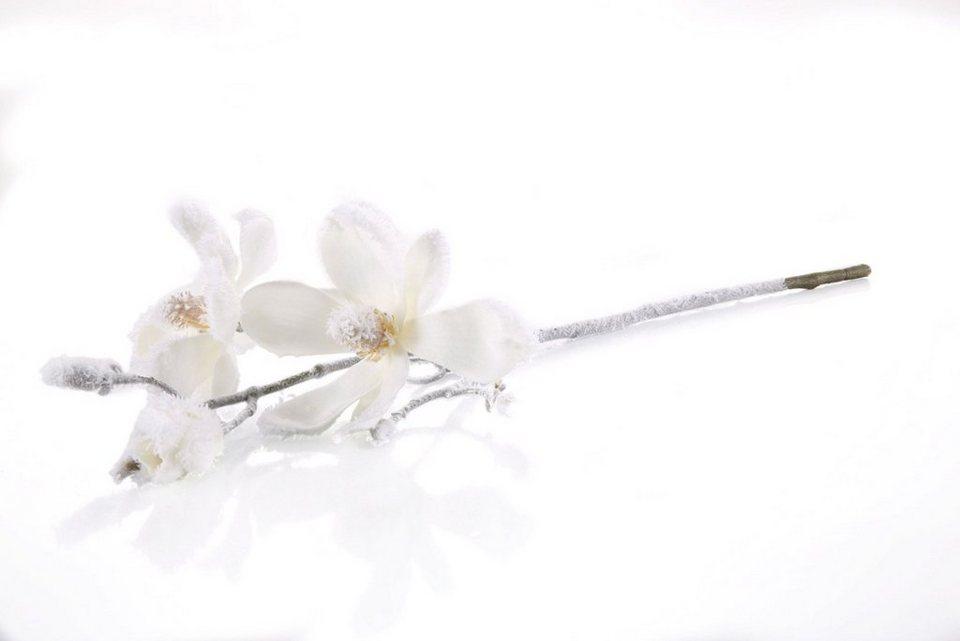 Magnolienzweig, 2-teilig in weiß gefrostet