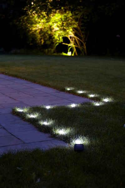außenbeleuchtung ideen pool buchsbaumhecke kugel blumen