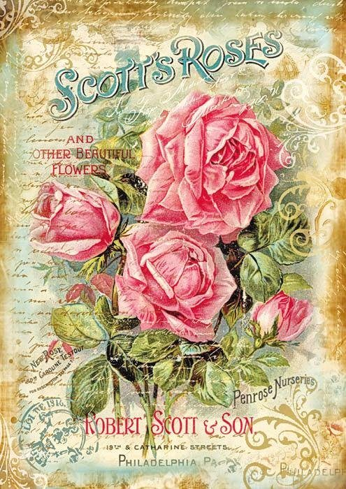 "Stamperia Motiv-Strohseide ""Scotts Roses"""