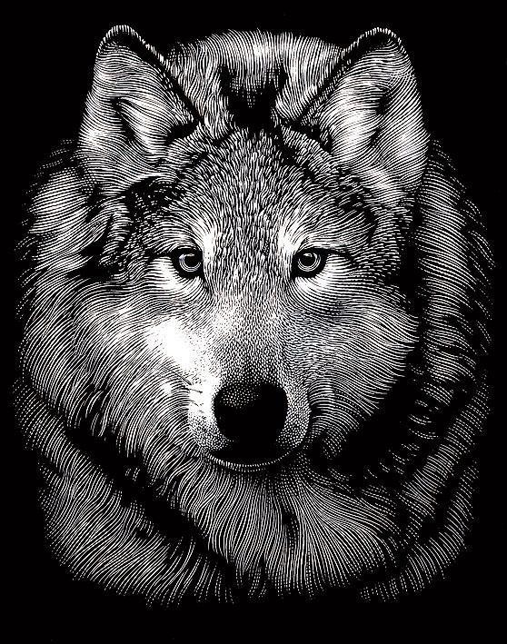 "reeves Kratzbild ""Wolf"""