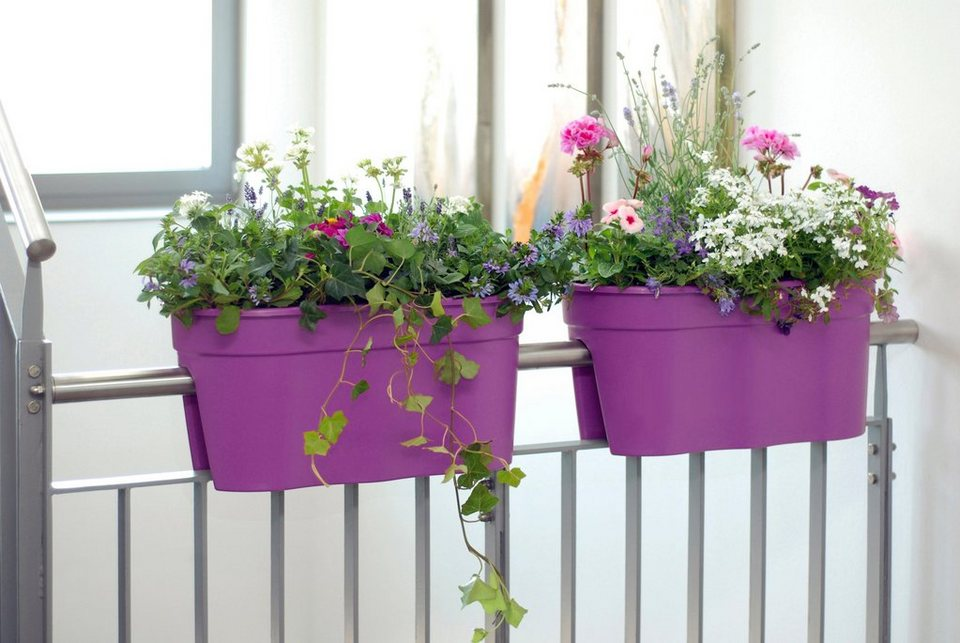 Set: Pflanztopf »Flowerclip XL«, 2 Stk., lila in lila