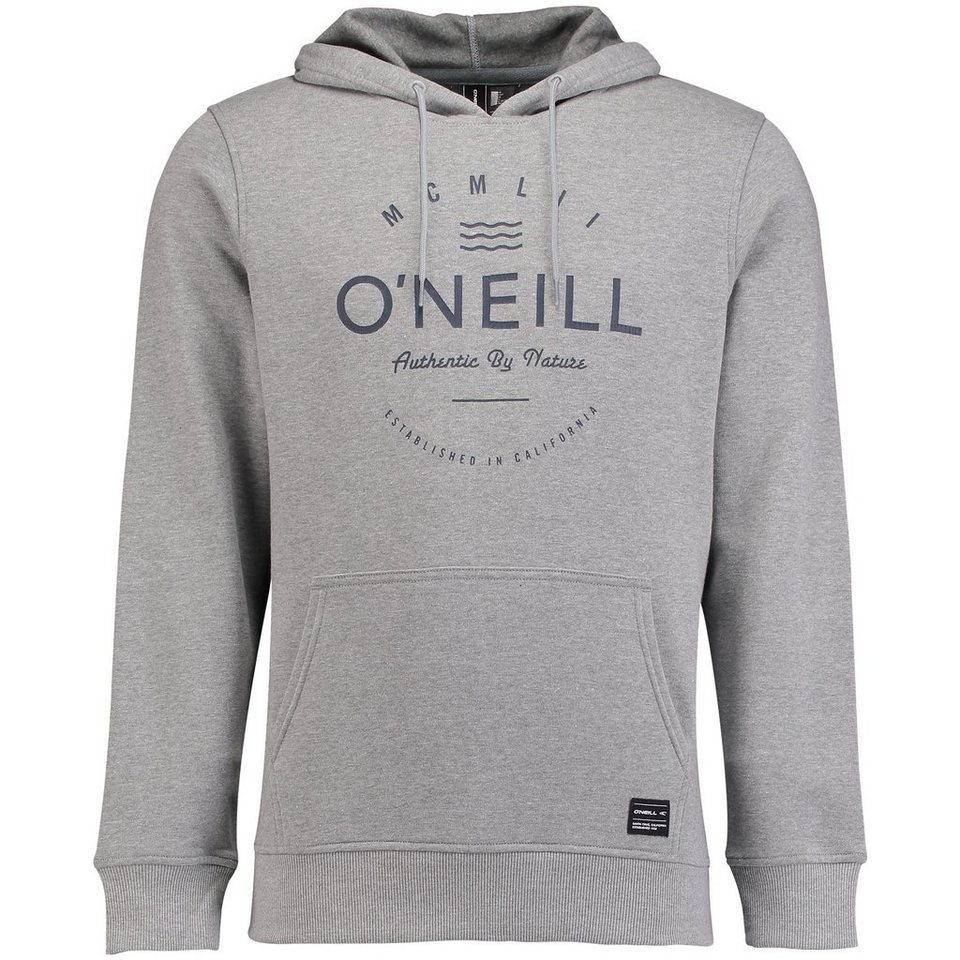 O'Neill Sweat »Type Hoodie« in Silbergrau