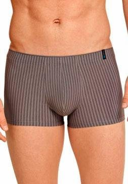 Schiesser Boxer in taupe