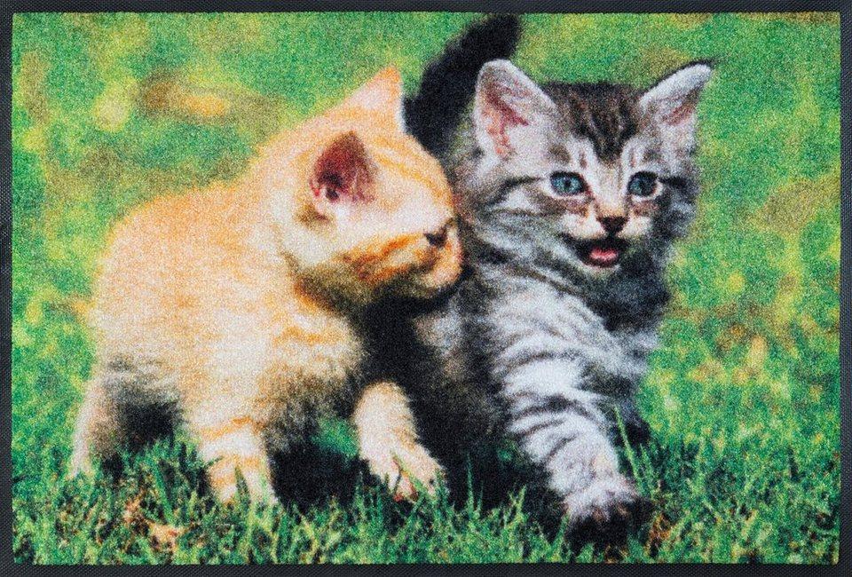 Fußmatte, wash+dry by Kleen-Tex, »Lovley Cats«, rutschhemmend beschichtet in grün grau
