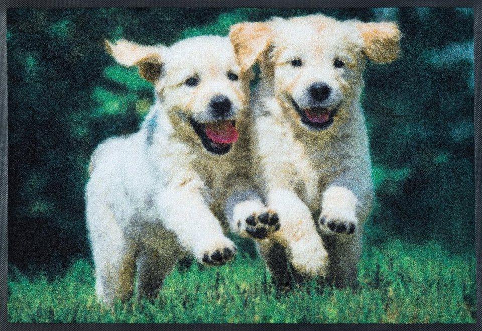 Fußmatte, wash+dry by Kleen-Tex, »Lovley Dogs«, rutschhemmend beschichtet in grün beige